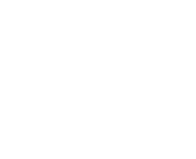 Table de billard BT500